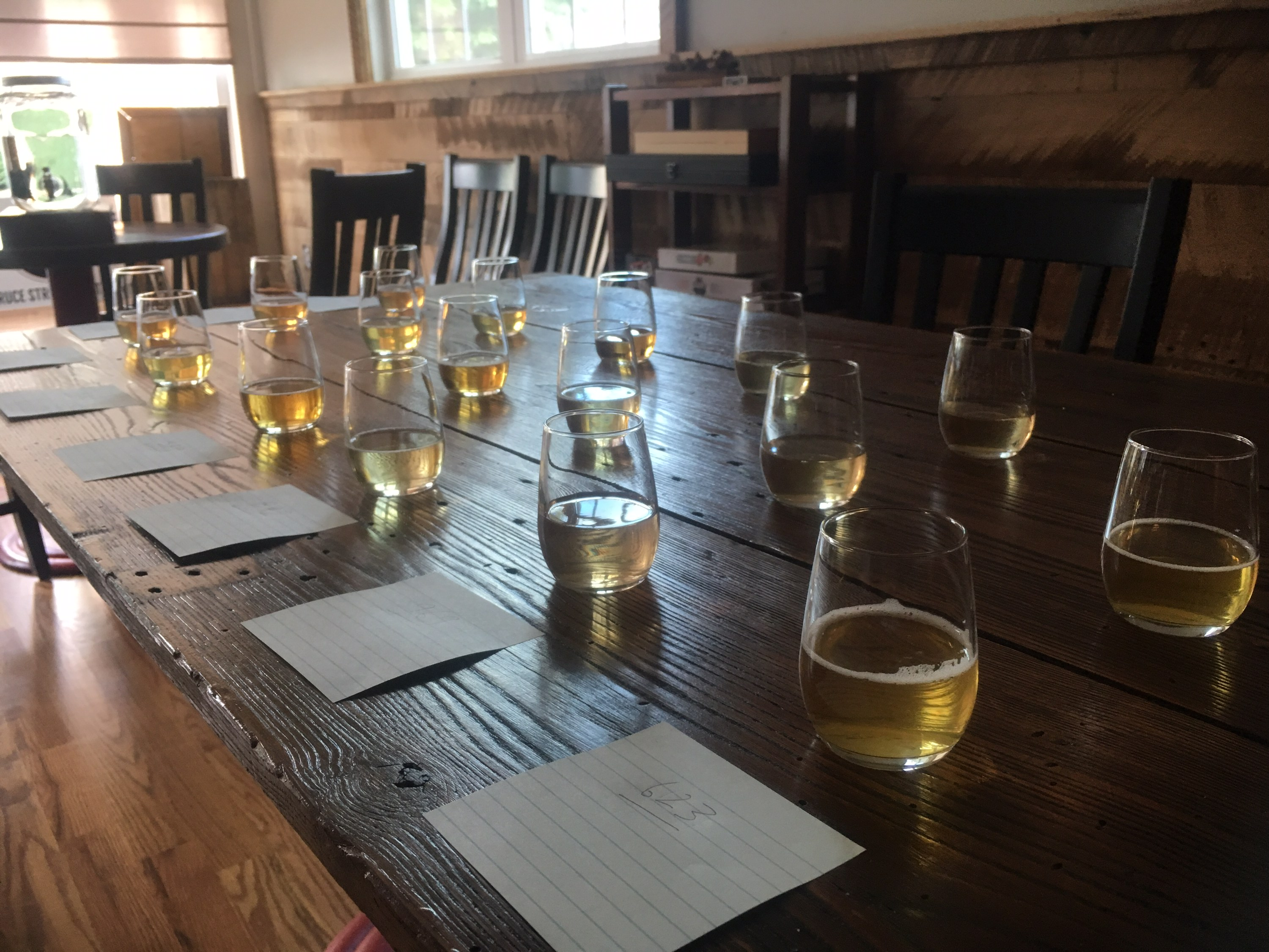 glass tumblers of cider lined up on a rough-hewn wood banquet table at a cider competition