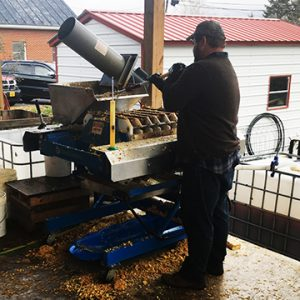 Big Fish Cider team member operating machinery