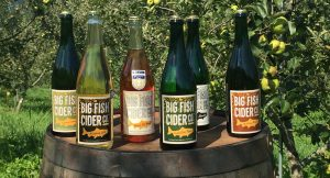 Bottles of Big Fish Cider sitting on top of a barrel in the orchard
